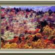 『紅葉景』 八甲田山