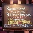 Peppermint Leaf 2nd Album『星をカバンに詰め込んで』リリース記念ライブ