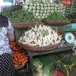 ミャンマーの大根と白菜