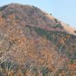 篠窪(しのくぼ)から見える隣町(矢倉岳)の奥で富士山を独り占め