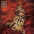 ミュージカルノートルダム・ド・パリ - 韓国語バージョン10周年
