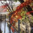 2017年11月25日 枝下川神社新嘗祭