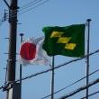今朝の散歩風景(キセキレイと宿り木と県旗)。