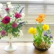日野教室の生花・ガーデンレッスン♪