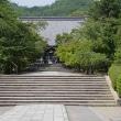 22日の散歩 ( 仁和寺往復で夏だより )