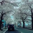 ★東北の旅を終えて東京へ
