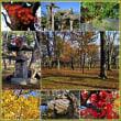 立冬を迎えた合浦公園