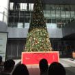 一足早いクリスマスツリー
