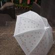 アマデウナヅキンのデザイン傘