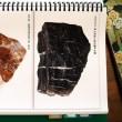 岩石・鉱石