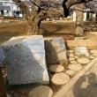 神田川の支流、妙正寺川を遡る(東京)