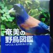 『奄美の野鳥図鑑