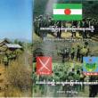 ミャンマー  ロヒンギャ以外の少数民族問題 停戦合意に向けて個人の立場で尽力する日本人も