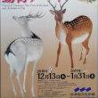 三井記念美術館 『仏像の姿 ~微笑む・飾る・踊る~』