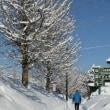 みちのくの冬2018 ~ 今年一番の冷え込み -13.5℃ ~