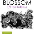 BLOSSOM  キモトユウコ 1/11-1/31