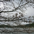 3月22日の散歩 寒い!