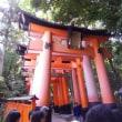 京都伏見稲荷へ行きました