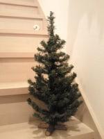 クリスマスツリー( セリア)*