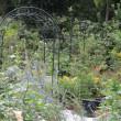 菜園との境界にアーチを設置