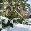 昭和の冬景色・・・