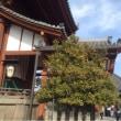 興福寺に参拝