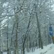 2651号Снег,снег,снег(雪×3)