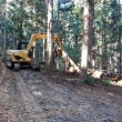 間伐のための作業道の整備 2018.11.18