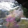 ぶらり旅・長谷寺②登廊(奈良県桜井市)