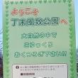 夕張岩見沢線 道道38号