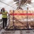 ヘラクレスの石棺がスイスからトルコに帰ってきた