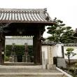 久米田寺、雨模様の古刹情緒を期待したんですが……。