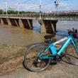 大和川が危険になるなんてどれだか降ったのか