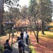 錦秋の京都一周トレイル