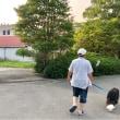 夕方散歩♪