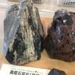 静岡市埋蔵文化財センターに行ってきたよ