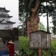 小田原城と清閑亭