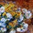 満開に咲く菊の花びら