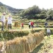 熊野の棚田 田畑の楽校2018C(9/15〜17)