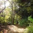 四季折々832  城山湖周遊コース