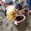 10月の森のボランティア、パワーポイント