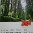 第53回全関東社会人卓球選手権大会
