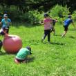 7月9日(日)の活動 野外で「ワイルドシェフ」体験!