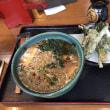 ウドの天ぷら  絶品