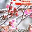 首都圏大雪警報