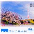 FM横浜、TV神奈川 ベリカード