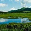 〈 湿原のシャルエール 〉