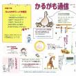 さいきん紙8月号・かるがも通信8月号発行です!