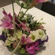 今週のお花♪~9月