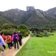 南アフリカ旅日記19~♪・・・ケープ半島の植物園